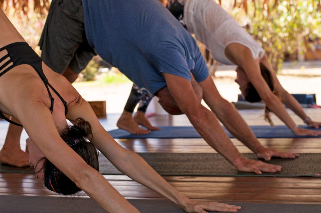 yoga classes | yoga teacher training costa rica